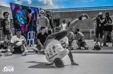 Hip Hop<br /><span>(Photography: RFM Equine)</span>
